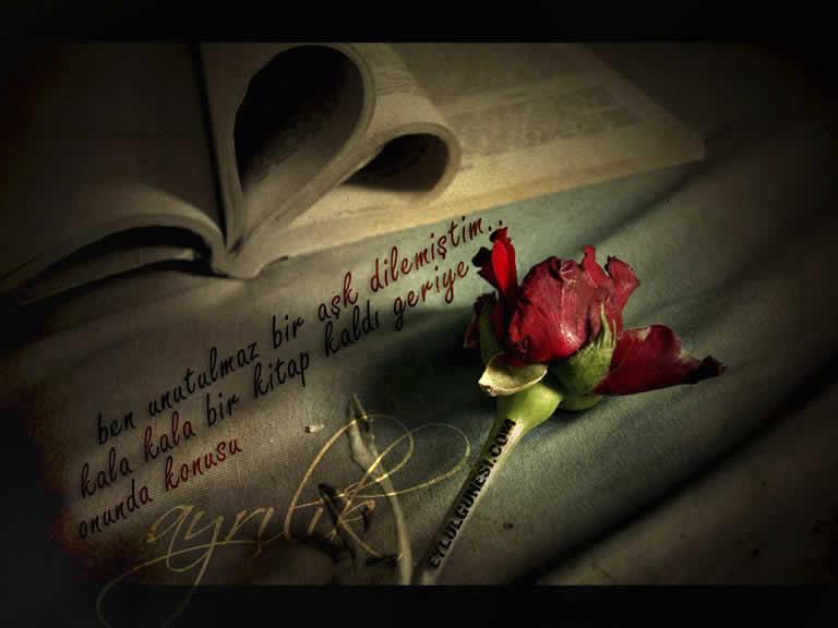 Güzel sözler aşk ve sevgi resimleri
